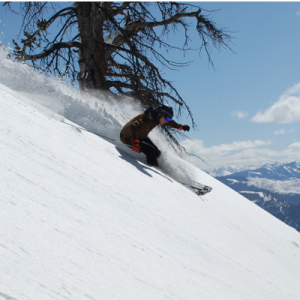 skierflipcrop